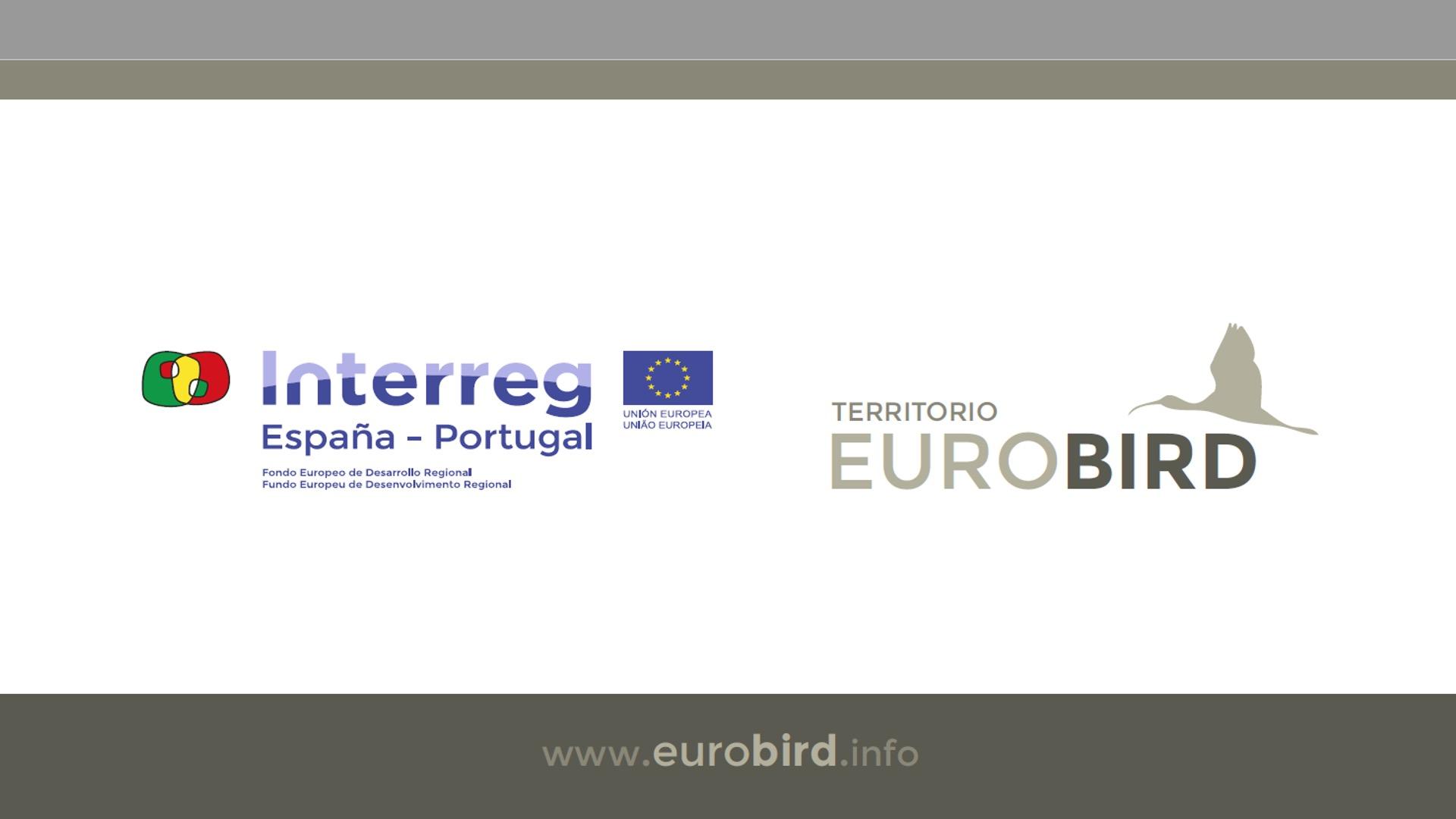 """(Português) Preservação do Meio Ambiente: """"Dia Mundial das Aves Migratórias"""" assinalado em Évora"""