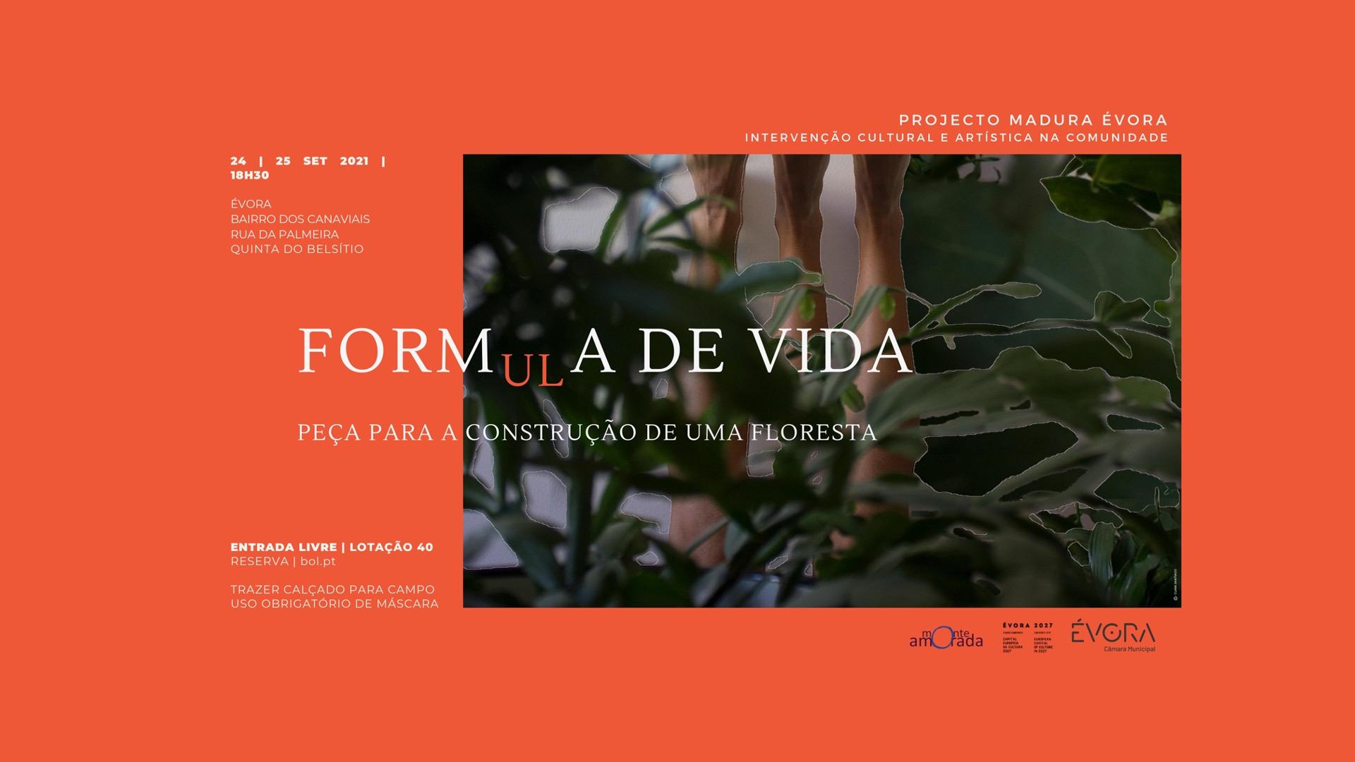 FORM(ul)A de VIDA – Peça para a Construção de uma Floresta